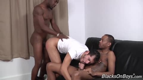 White dude sucking off two black cocks